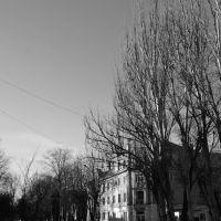 Дом около школы №1 (ул. 8 марта), Желтые Воды