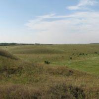 Природа у села Зеленое (1), Зеленое