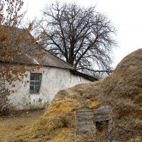 Будинок селянина у с.Інгулець (колишня єврейська колонія), 2012, Ингулец