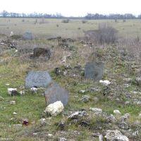 Старовинне кладовище єврейської колонії Інгулець. Знаходиться в занедбаному стані, поступово зникає. Фото 2012 р., Ингулец
