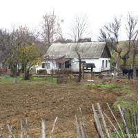 Скоро зима, 2012, Ингулец