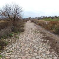 Стара дорога між Зеленим та Стародобровольським. Вид в бік Зеленого, 2012, Ингулец