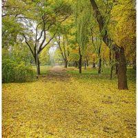 Осень, Кривой Рог