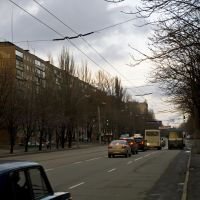 пр.Мира 14.01.2012, Кривой Рог