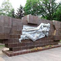 Братська могила біля лялькового театру. Тут поховані 272 радянських воїни, які загинули під час визволення міста Кривого Рогу 22 лютого 1944 року та 7 комсомольців-підпільників, розстріляних у вересні 1943 року. Фото 2012 р., Кривой Рог