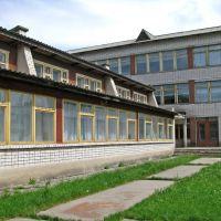 Школа №1, Кринички