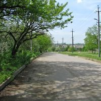 Улица Школьная, Кринички