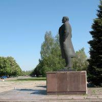 Монумент бувшому вождю народів, Магдалиновка