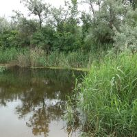 река Ревун, Марганец