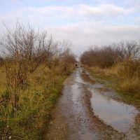 Autumn road to Gorodische, Марганец