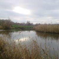 Tomakovka river near Gorodische, Марганец