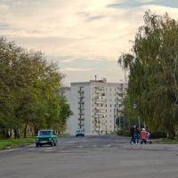 Перекрёсток ул. Карла Либкнехта и Преображенской, Никополь