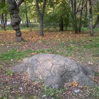 Остатки прошлого, Орджоникидзе