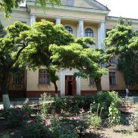 Школа исскуств, Орджоникидзе