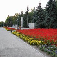 У Вечного огня, центр города, Павлоград