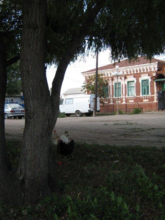 ул. Л. Толстого, Елань