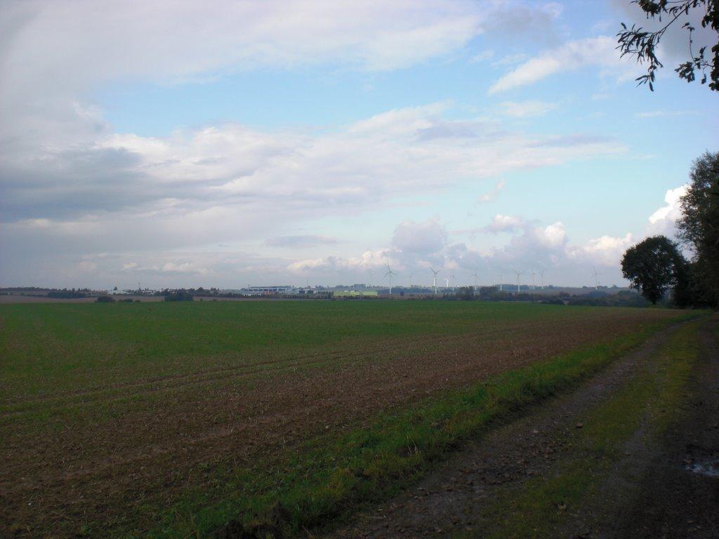 Blick Richtung A14, Lehden und Firma Schollglas, Радебюль
