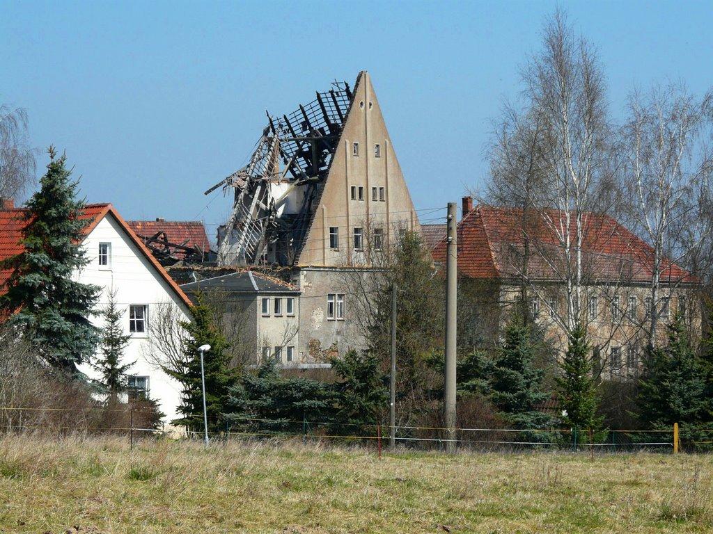 Alte Schule, Риса
