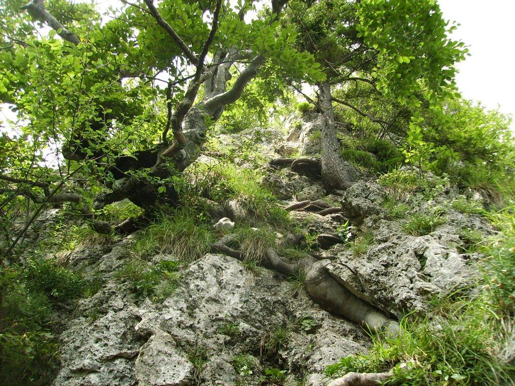 Klettersteig hoch zum Engelstein, Бэйреут