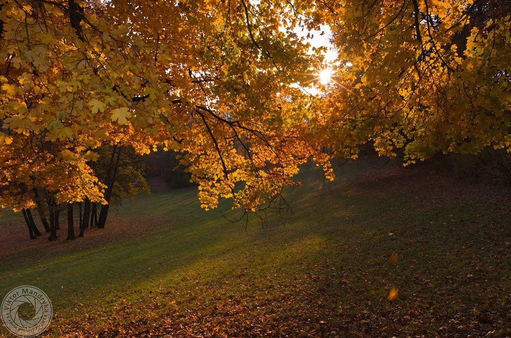 Autumn, Кобург