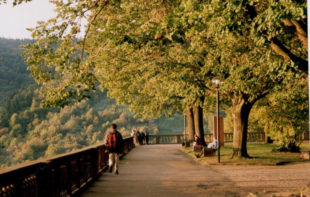Heidelberg (near the castle), Germany.,, Хейдельберг