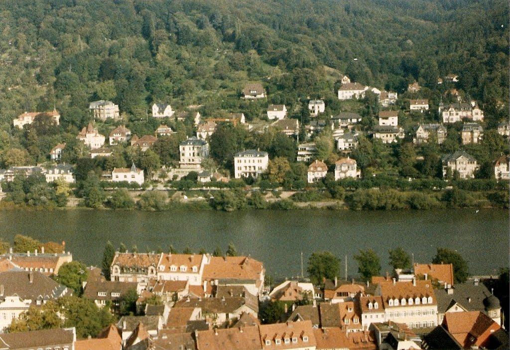 Panoramica del Rio Neckar, Хейдельберг