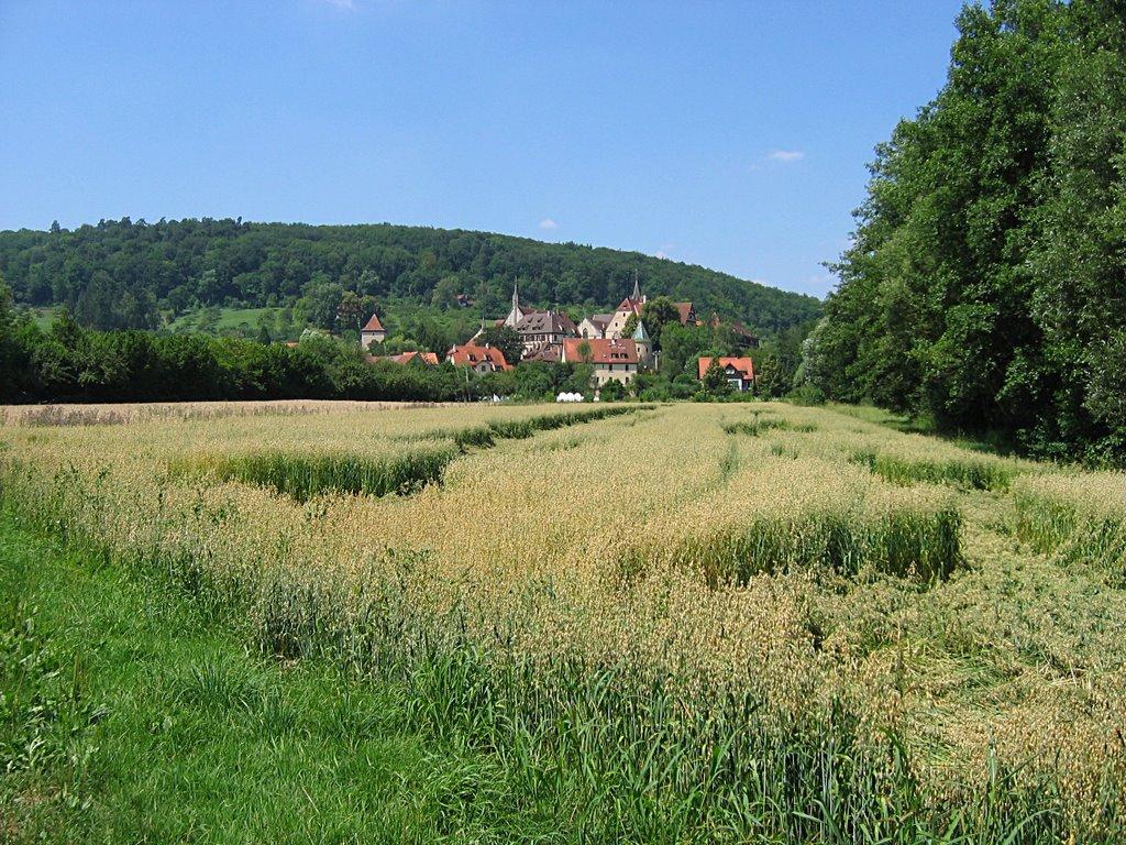 Bebenhausen: Sicht auf Bebenhausen über die Felder, Хейлбронн