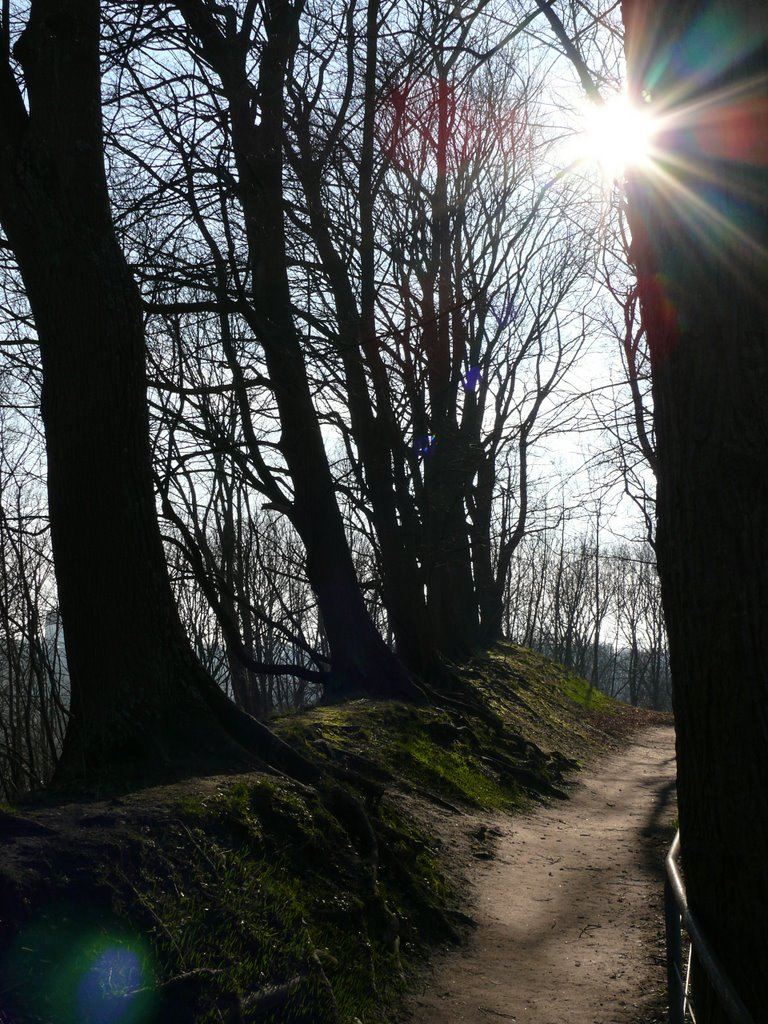 Lüneburg - Fußweg auf dem Kalkberg -, Лунебург