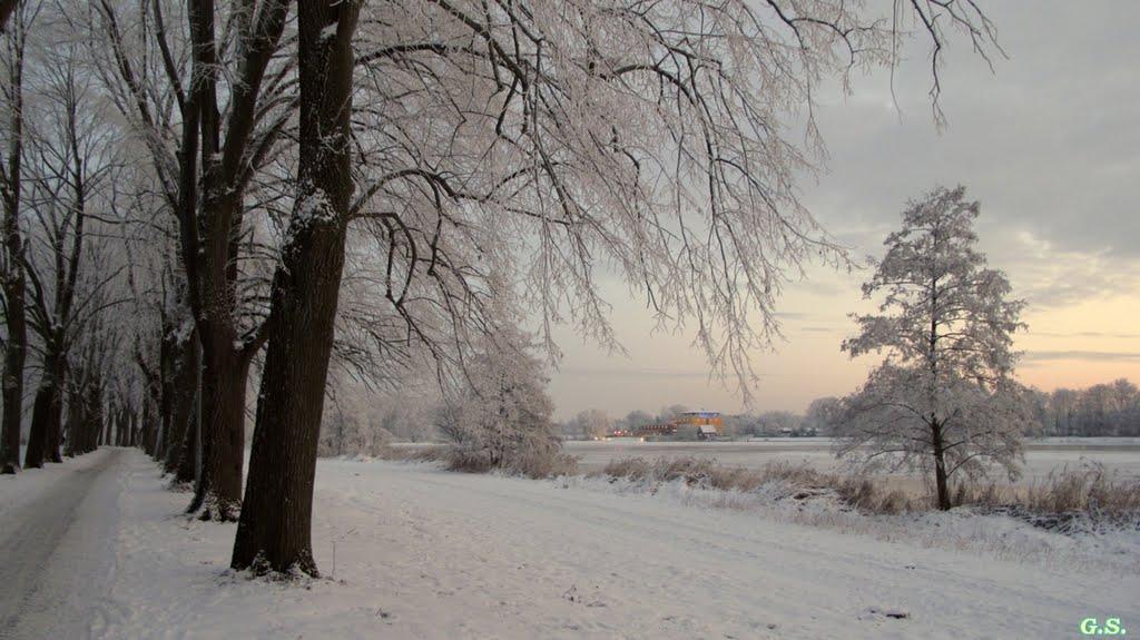 winter am vechtesee, Нордхорн