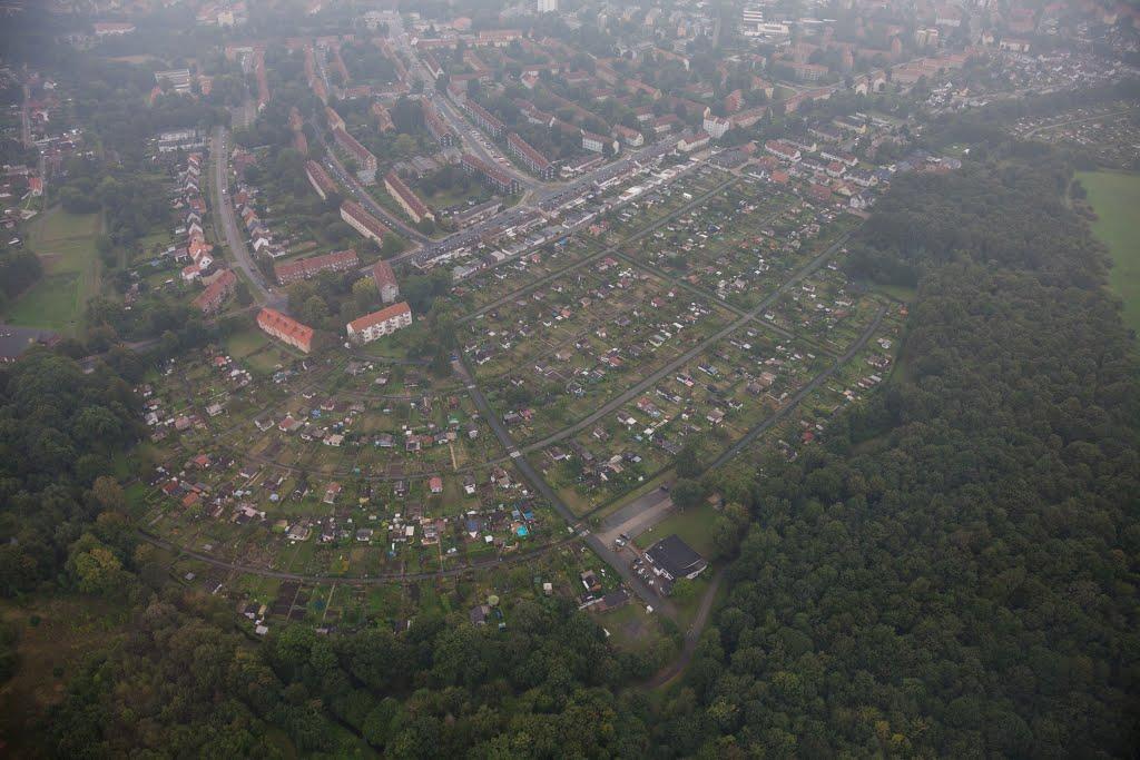 Luftaufnahme | Kleingärten | Feldstraße | Salzgitter Lebenstedt, Salzgitter