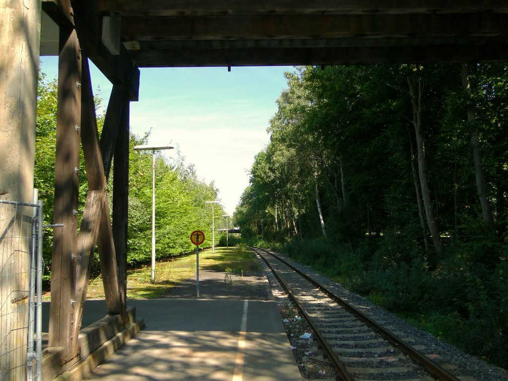 Endpunkt SZ-Lebenstedt (früher einmal Bahnhof), Salzgitter