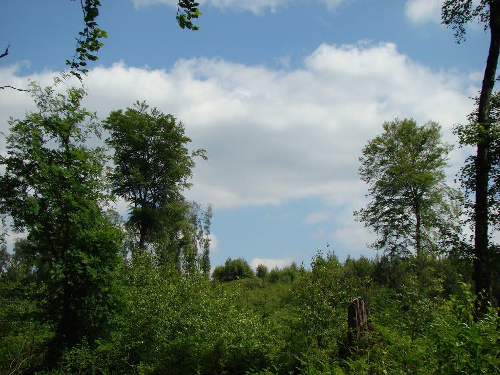Niederbergisches Land Juni 2012, Ратинген