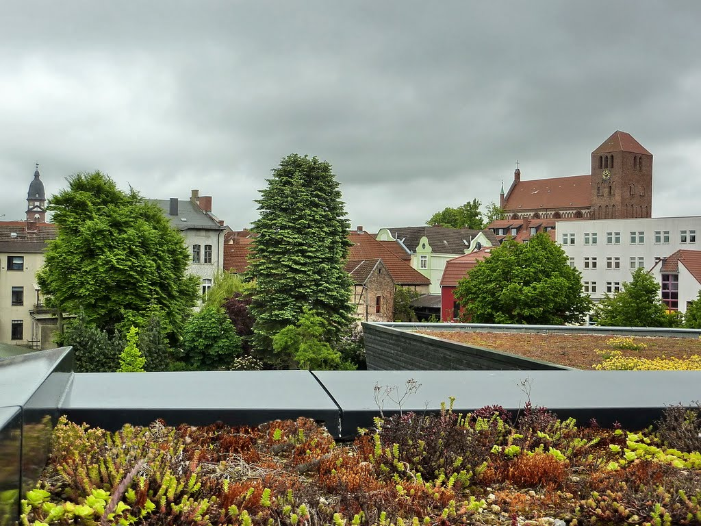 Extensive Begrünung auf dem Dach des Müritzeums in Waren, Варен