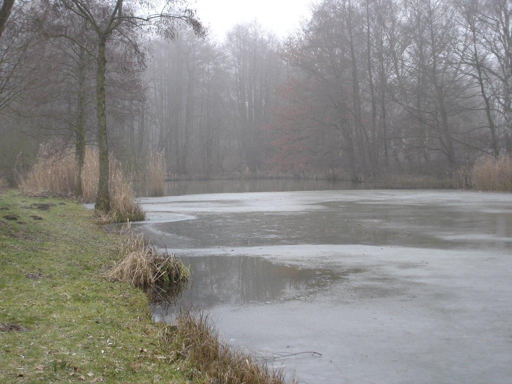 Teich, Гарделеген