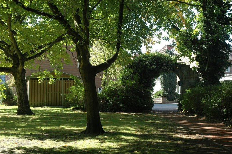 Am Park, Линген