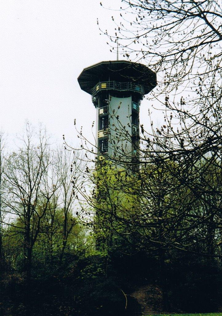 Bärensteinturm, Плауен