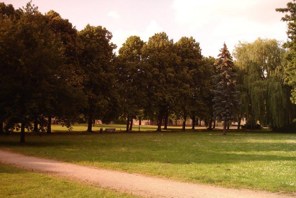 Stadtpark Teterow, 06/2011, Тетеров