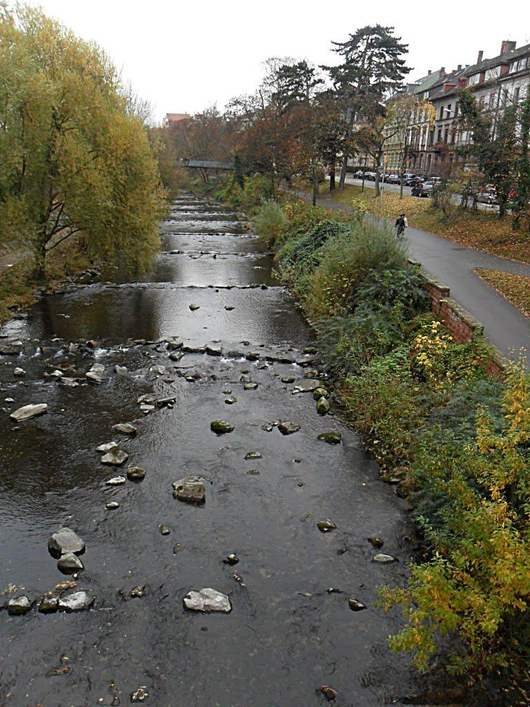 Freiburg - Dreisam - Spaziergang im November -, Фрайбург