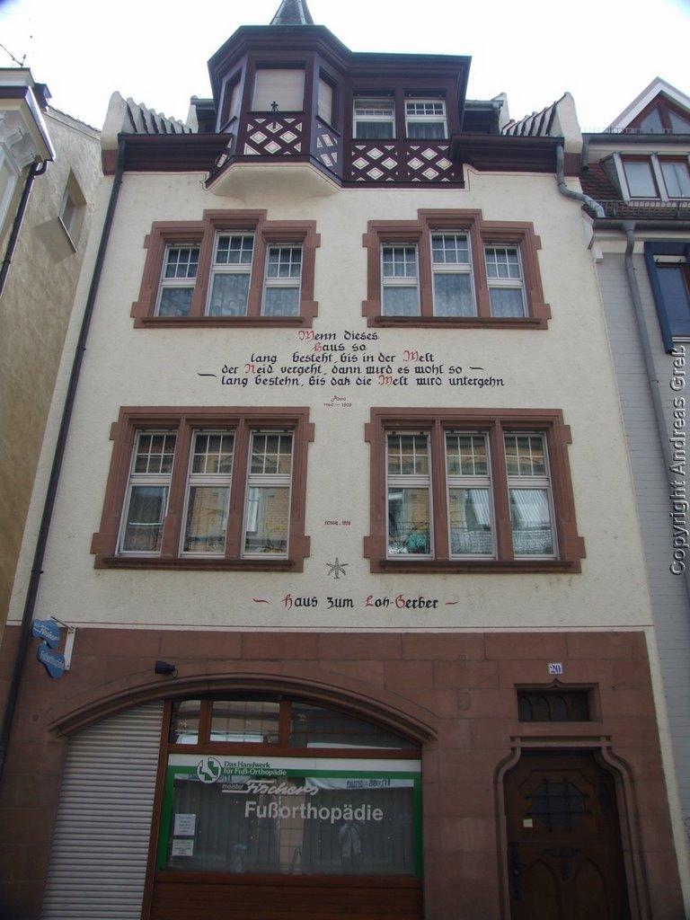 Freiburger Haus, Фрайбург