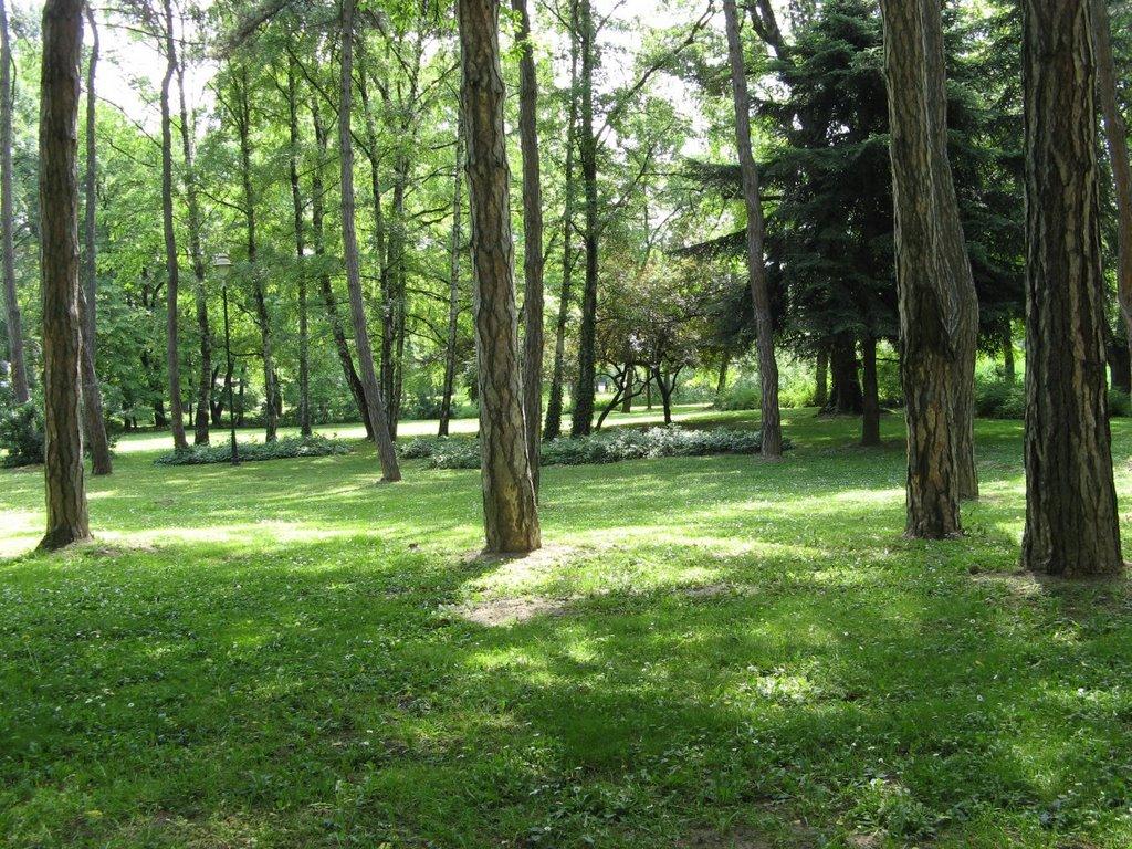 Novi Sad, Futoški Park, Нови-Сад