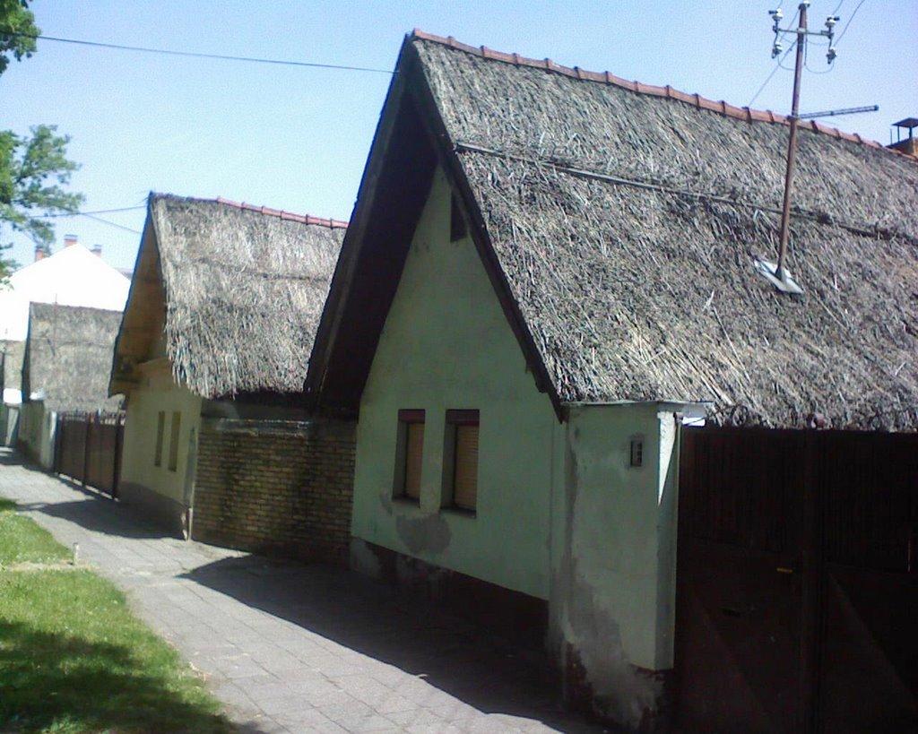Ulica KRALJEVIĆA MARKA,Novi Sad, Нови-Сад