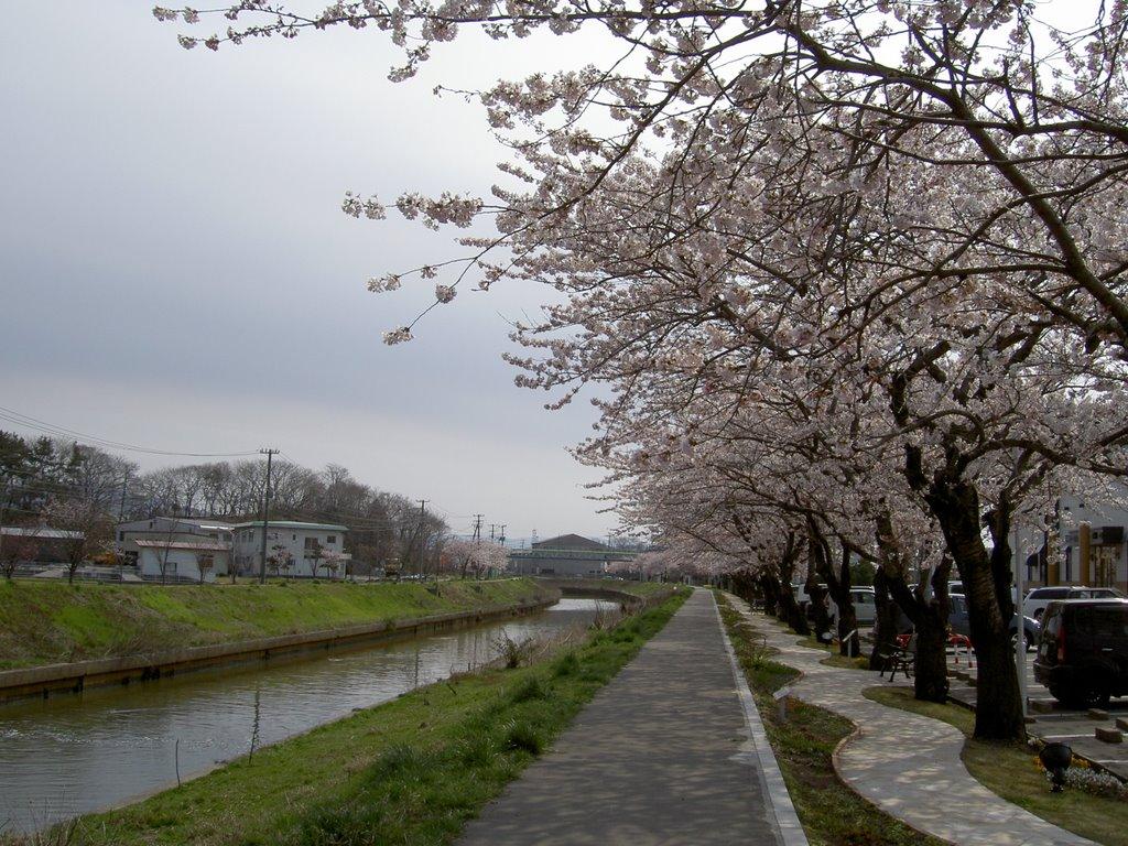 Kusozu River, Иокот