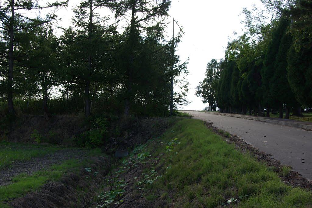 旧札沼線の北竜駅付近の眺望, Нумата