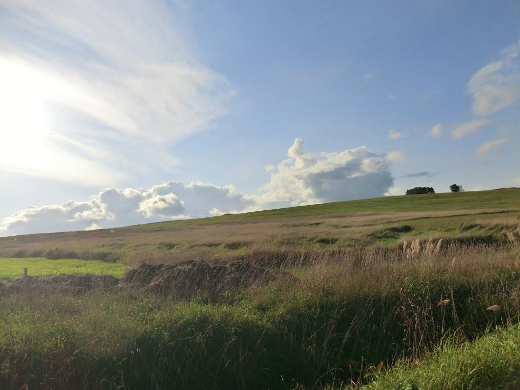 五ケ山地区模範牧場を見る, Нумата