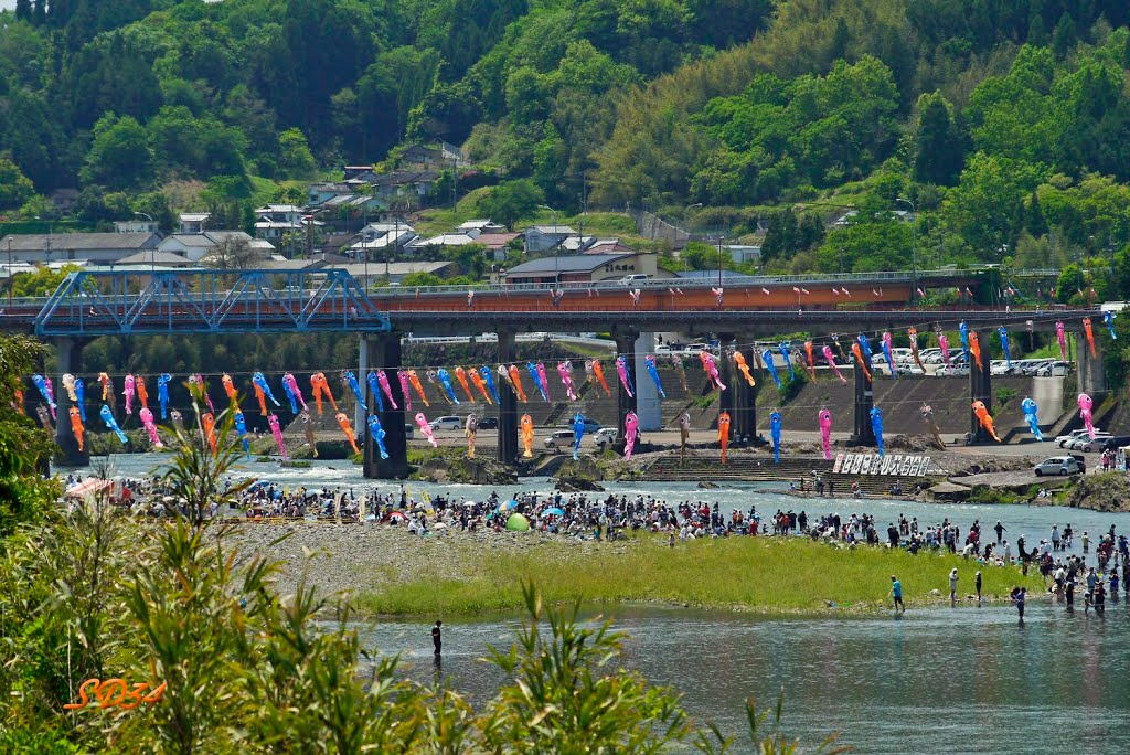 豊後大野市 犬飼のどんこ釣り大会! A fishing tournament...but the participating people seem to enjoy in a river., Исе