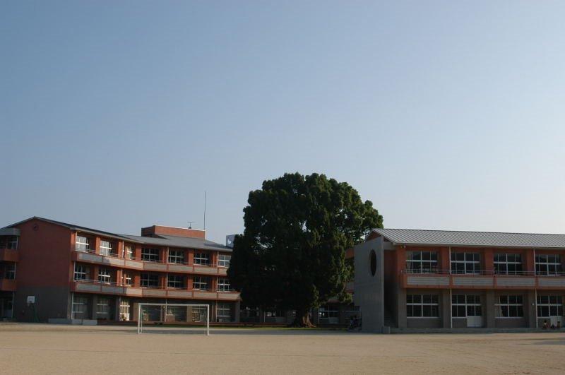 三重第一小学校と三本楠, Исе
