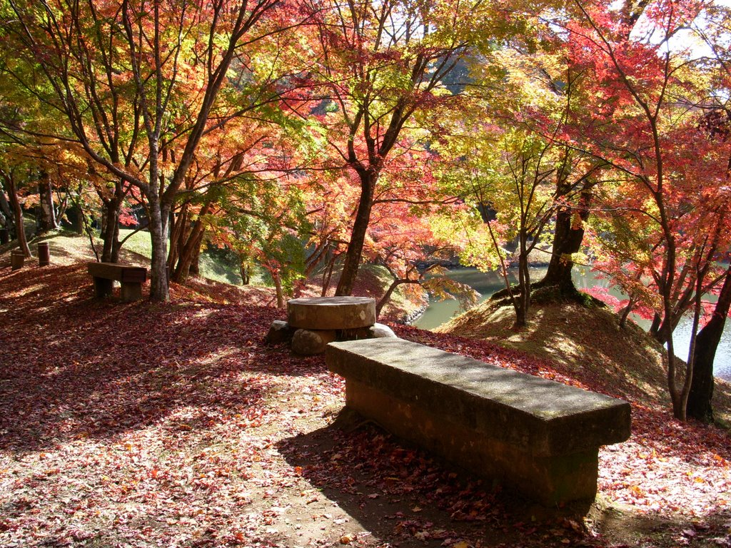 紅葉, Сузука