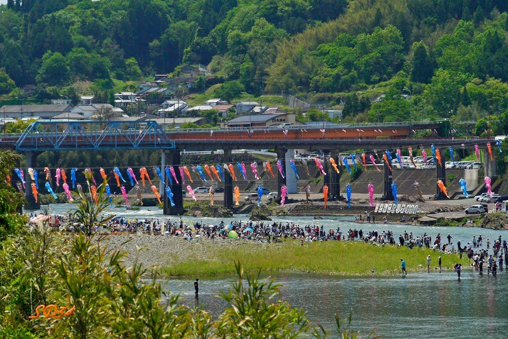 豊後大野市 犬飼のどんこ釣り大会! A fishing tournament...but the participating people seem to enjoy in a river., Сузука