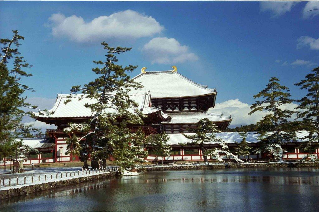 東大寺大仏殿 Toudaiji Daibutsuden, Сакураи