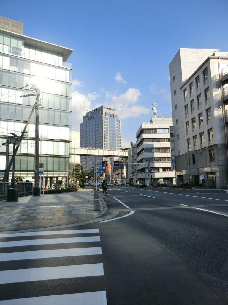 千葉県自治会館付近, Ичикава